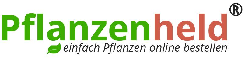 Pflanzenversand Jetzt Pflanzen Online Kaufen Beim Pflanzenheld