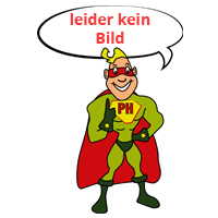 Liguster Hecke Liguster Atrovirens Container (Topf) 40 - 60 cm