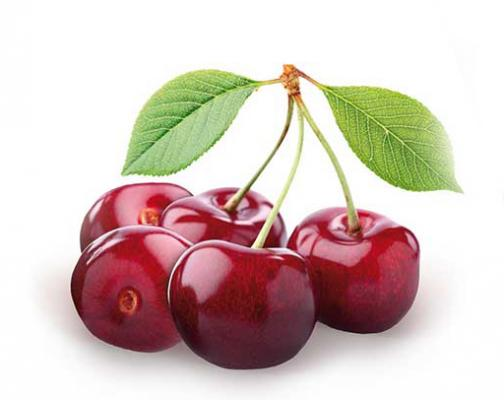 Süßkirsche 'Burlat' Prunus avium