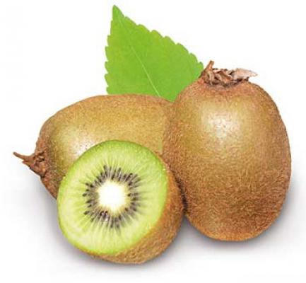 Kiwi - Actinidia deliciosa 'Jenny'