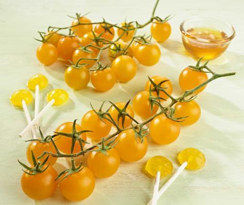Gelbe Nektar-Cherrytomate 'Solena® Sweet Yellow veredelt'